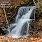 IMG_9846_2__1_Detail_1-cap.jpg