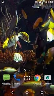Fish Aquarium A Live Wallpaper - náhled