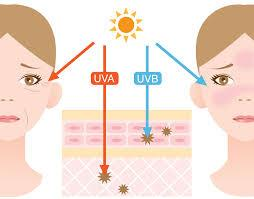 How old is my skin? what's my glogau age?, How old is your skin? Learn How to Take Control Of How You Age ™ Luxury Lotus Spa