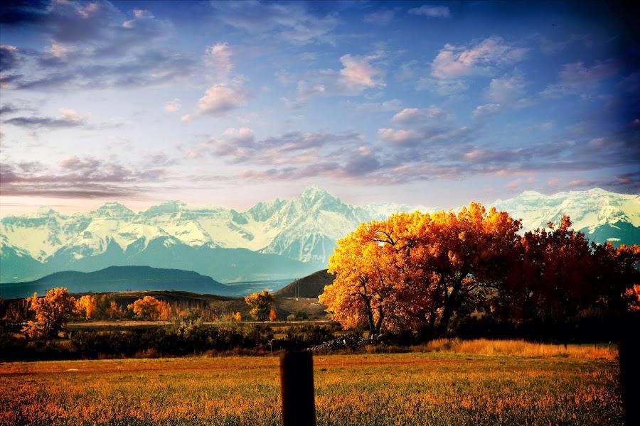 The Colorado Rockys by Richard Bearden - Landscapes Prairies, Meadows & Fields