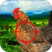 Infected Chicken Shooter- Shoot Hens