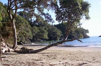 Photo: Tawhitokino beach entrance at high tide