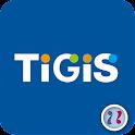 TiGiS