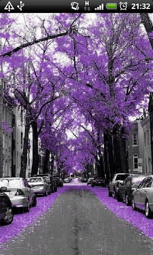 Purple City Street Live Wallpa