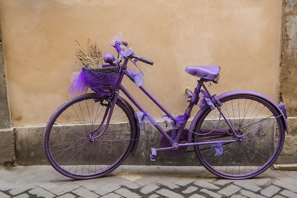 cyclette violette di michele vitulano