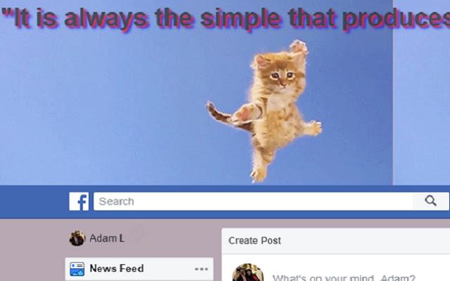 Fly-cat Webpage Awesome-izer!