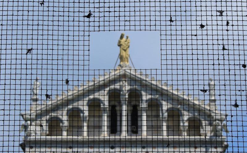 Cattedrale di Pisa di dino pas