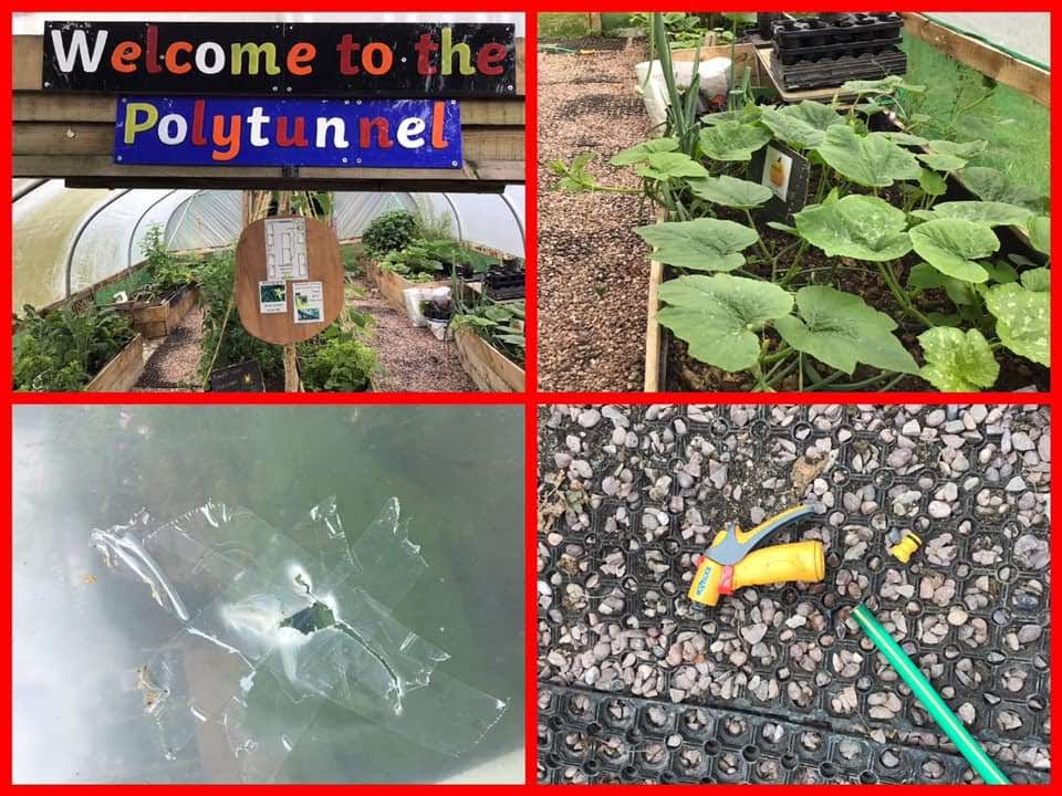 Vandals break into school garden causing damage