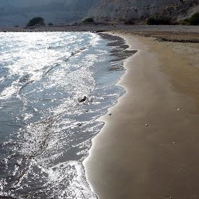 summer dream by Adian Ad - Landscapes Beaches ( seascape, beach, sun, sea, summer )