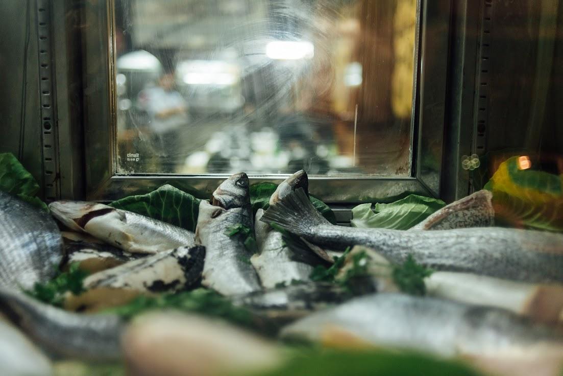 Lisszabon, hal, halak, hal pult, étterem, kirakat