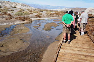 Photo: A part of salt creek runs with brackish water year-round. It is here that the last survivor of Lake Manly resides: the Death Valley pupfish.