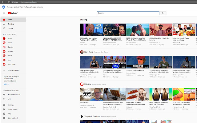 Youtube Search Focus