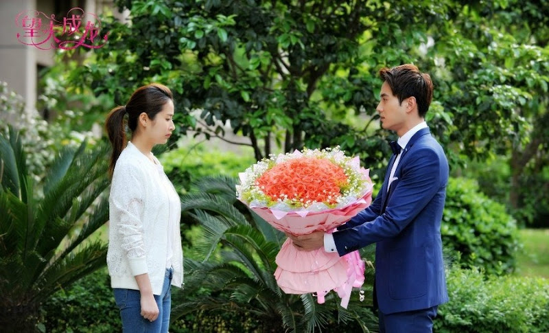 Hope Husband Success China Web Drama