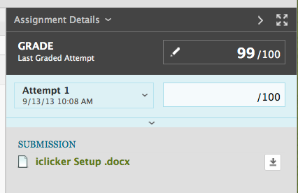 screenshot of assignment details