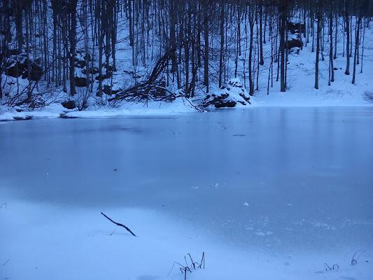 Neve & ghiaccio  di Manghituducla