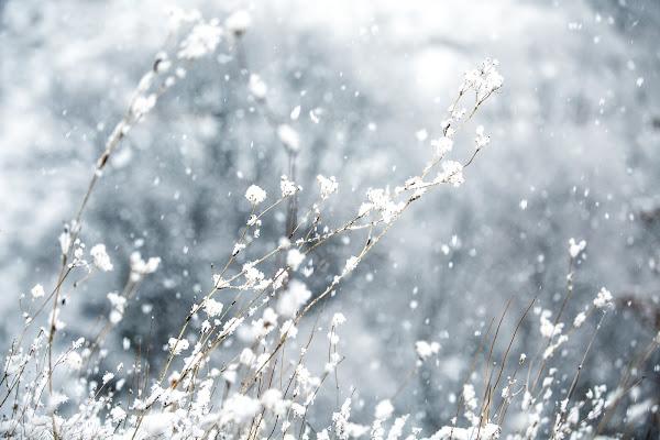 Nevicata di Tindara