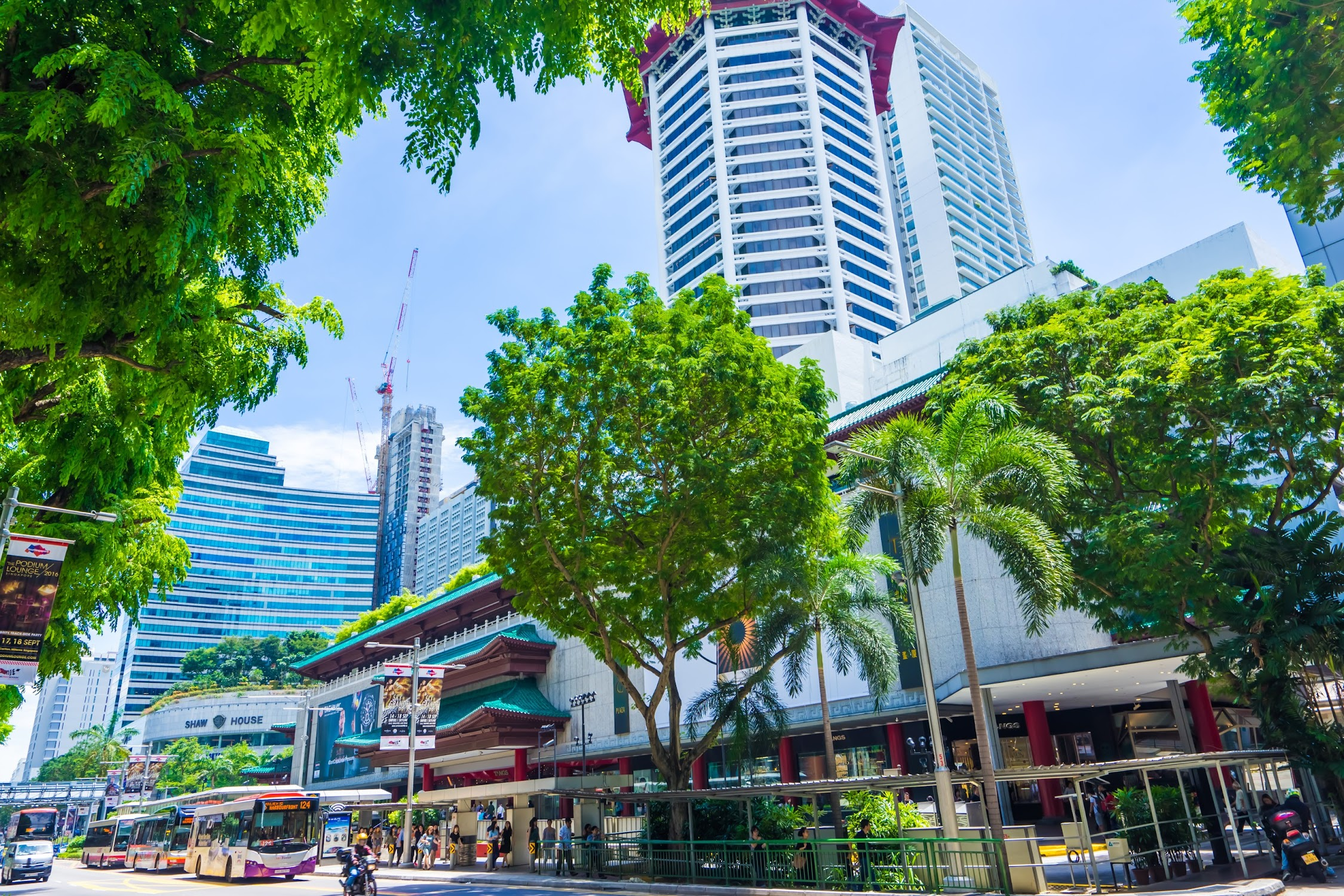 Singapore Orchard2
