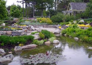 Photo: In Coastal Maine Botanical Gardens(http://www.mainegardens.org/)