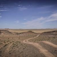 Tracce nel deserto del Gobi di