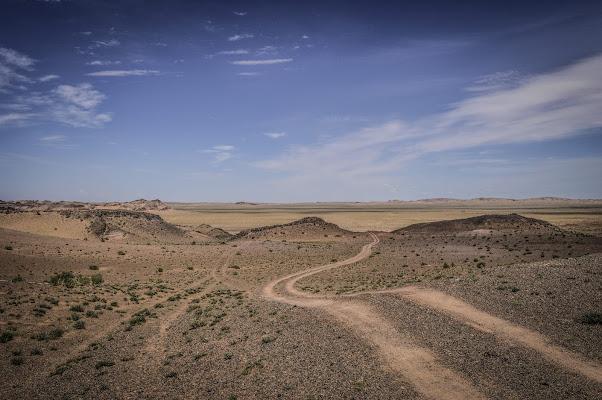 Tracce nel deserto del Gobi di silvia_celio
