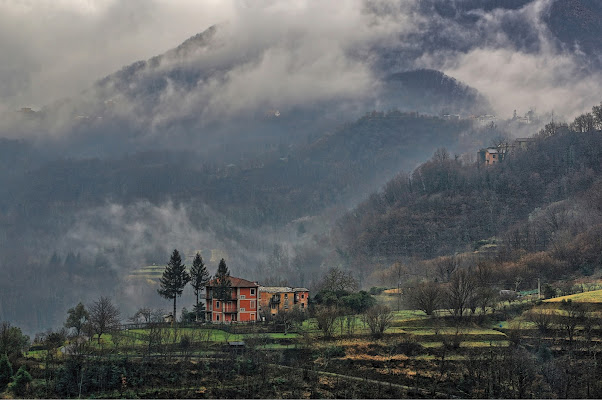 Into the fog di maurizio_longinotti