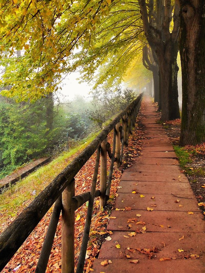 Perugia in ottobre di angela_d