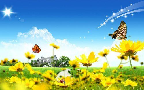C:\Users\Надежда\Desktop\Pictures_butterflies_and_flowers_2-500x313.jpg