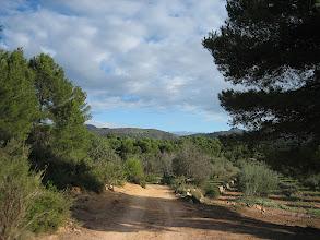 Photo: JPL. Soneja