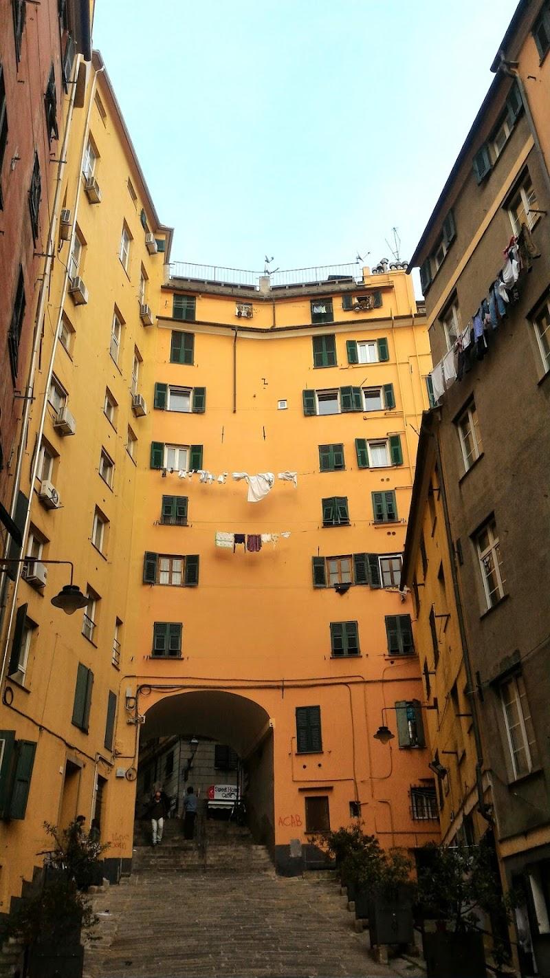 Genova, dai truogoli d iSanta Brigida di VeraWilma