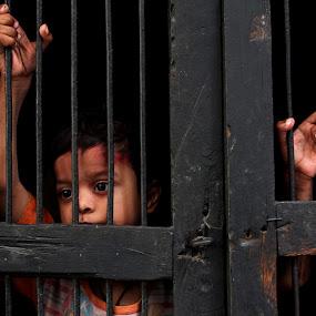 All Alone by Prithiviraj Kiridarane - Babies & Children Children Candids ( home, india, baby, gate, delhi )