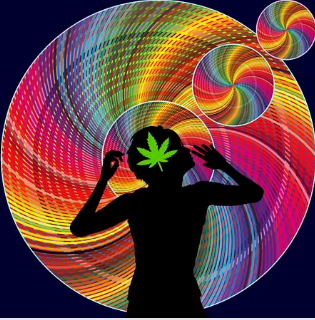social equity in cannabis