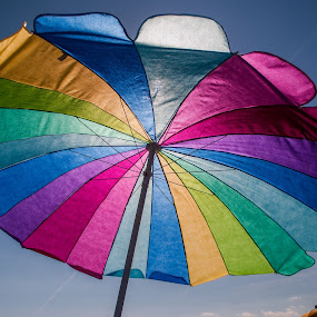 Beach Umbrella by Prentiss Findlay - Artistic Objects Other Objects ( shore, beach umbrella, ocean, beach, beach umbrella colors )