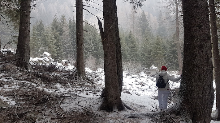 Mountain's Elf di Th3_Gh3d0