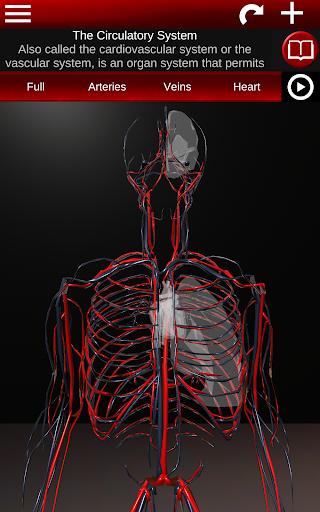 Circulatory System in 3D (Anatomy) 1.58 screenshots 9