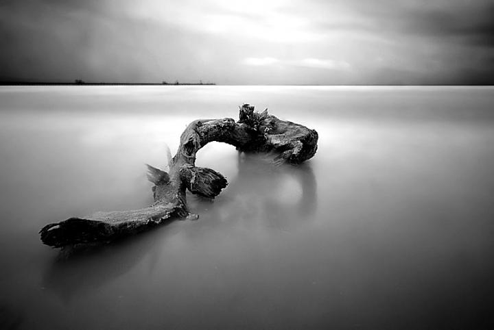 Il Silenzio della Natura di InsolitiScatti-di-CarloSoro