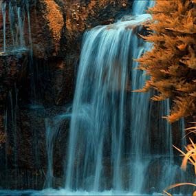 WaterFall by Savio Joanes - Nature Up Close Water ( #moss #water #rocks #fall #waterfall )