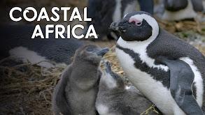 Coastal Africa thumbnail