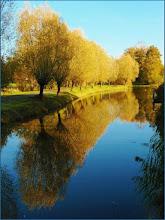 Photo: Landschappen Foto: Marijke van Eertwegh