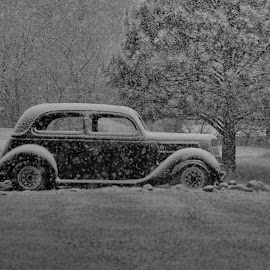 In the Snow by Michele Richter - Transportation Automobiles