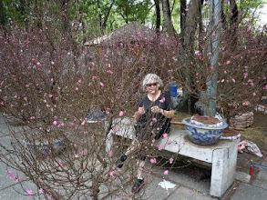 Photo: Saigon flower show
