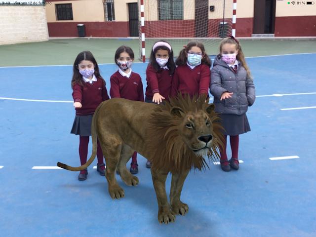 Alumnos de La Salle Chocillas visitan de forma online un zoo.