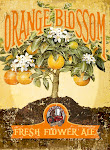 Orange Blossom Ale