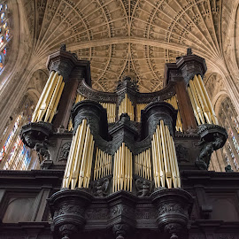 King's Chapel in Cambridge by Tomasz Karasek - Buildings & Architecture Places of Worship ( ceiling, king, church, stained glass, vaults, statue, cambridge, chapel, king's chapel, stained glass window )