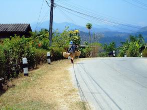 Photo: Returning Home