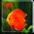 Aquarium Video Wallpaper file APK Free for PC, smart TV Download