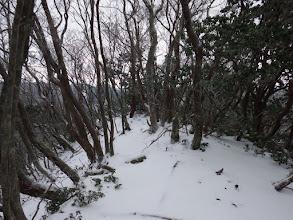 水谷山手前のピーク(展望地)