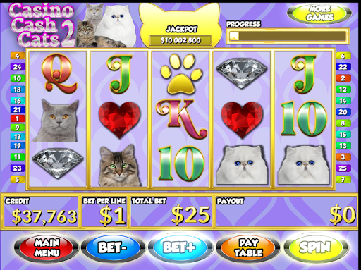 Slots Casino Cash Cats 2 PAID