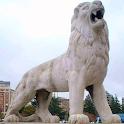 León en tu Móvil - España icon
