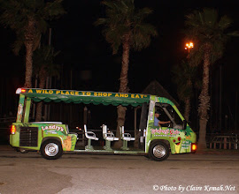 Photo: Ride from the free Kemah parking under the bridge!