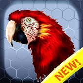 Birds Color Number: Pixel Art Bird Coloring 2019 Android APK Download Free By Brain Training Studio